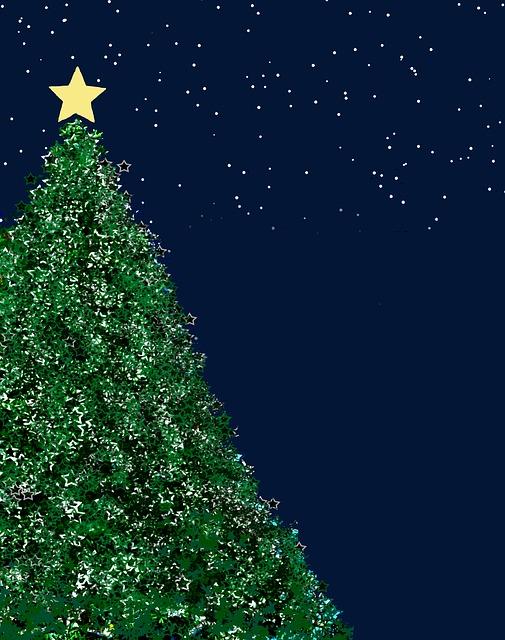christmas-tree-987649_640